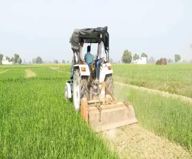 किसान आंदोलन से आहत किसान ने बर्बाद कर दी गेहूं की खड़ी फसल