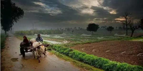 हरियाणा में मॉनसून को लेकर मौसम विभाग ने जारी किया बुलेटिन, जताई बारिश की संभावना