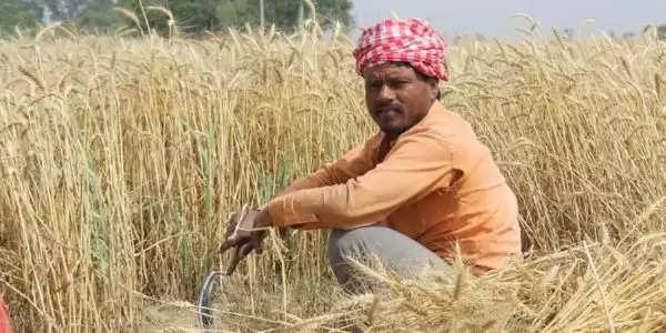 परेशान न हों किसान,निर्धारित एमएसपी पर खरीदा जाएगा फसलोंका एक-एक दाना – दुष्यंत चौटाला