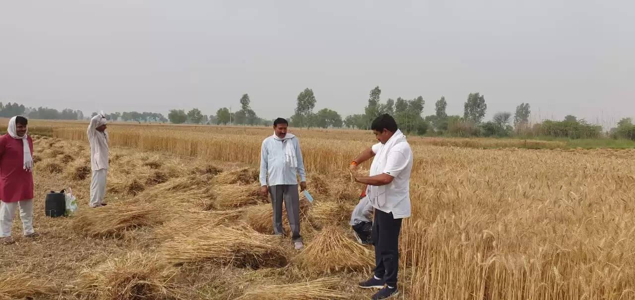 हरियाणा के इस विधायक ने खेतों में जाकर की किसानों से मुलाकात
