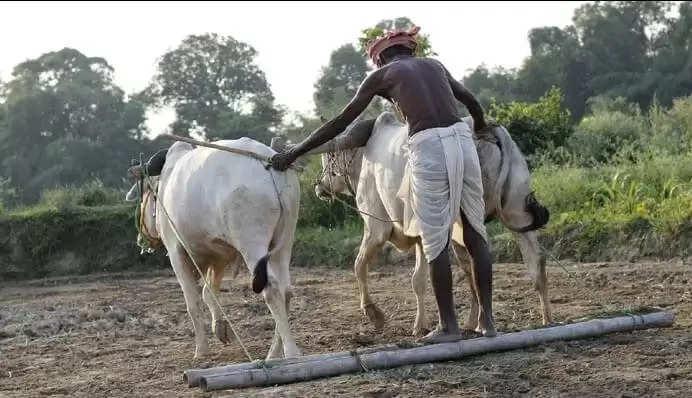 हरियाणा में किसानों को बड़ी राहत, जुर्माना माफी योजना-2019 की हुई शुरुआत