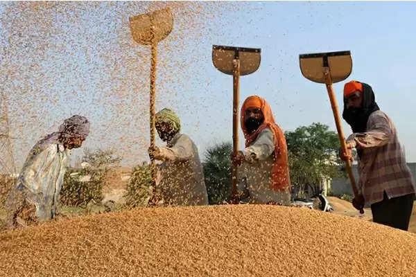 सरकार का किसानों के लिए उचित प्रयास, किसानों की एक लाख प्रति एकड़ होगी आय- मुख्यमंत्री